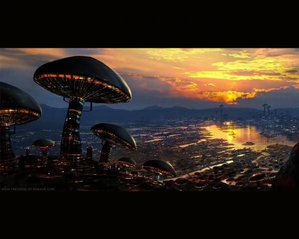 Space Mushrooms, Fiction 1