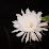 Anilkumar Ps's profile photo