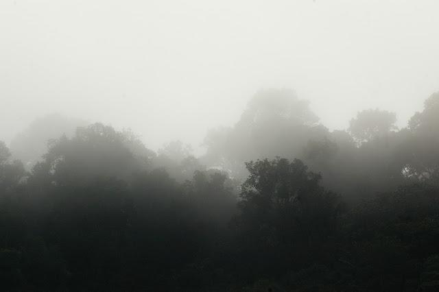 Le matin à Saut Athanase (Guyane). 22 novembre 2011. Photo : J.-M. Gayman