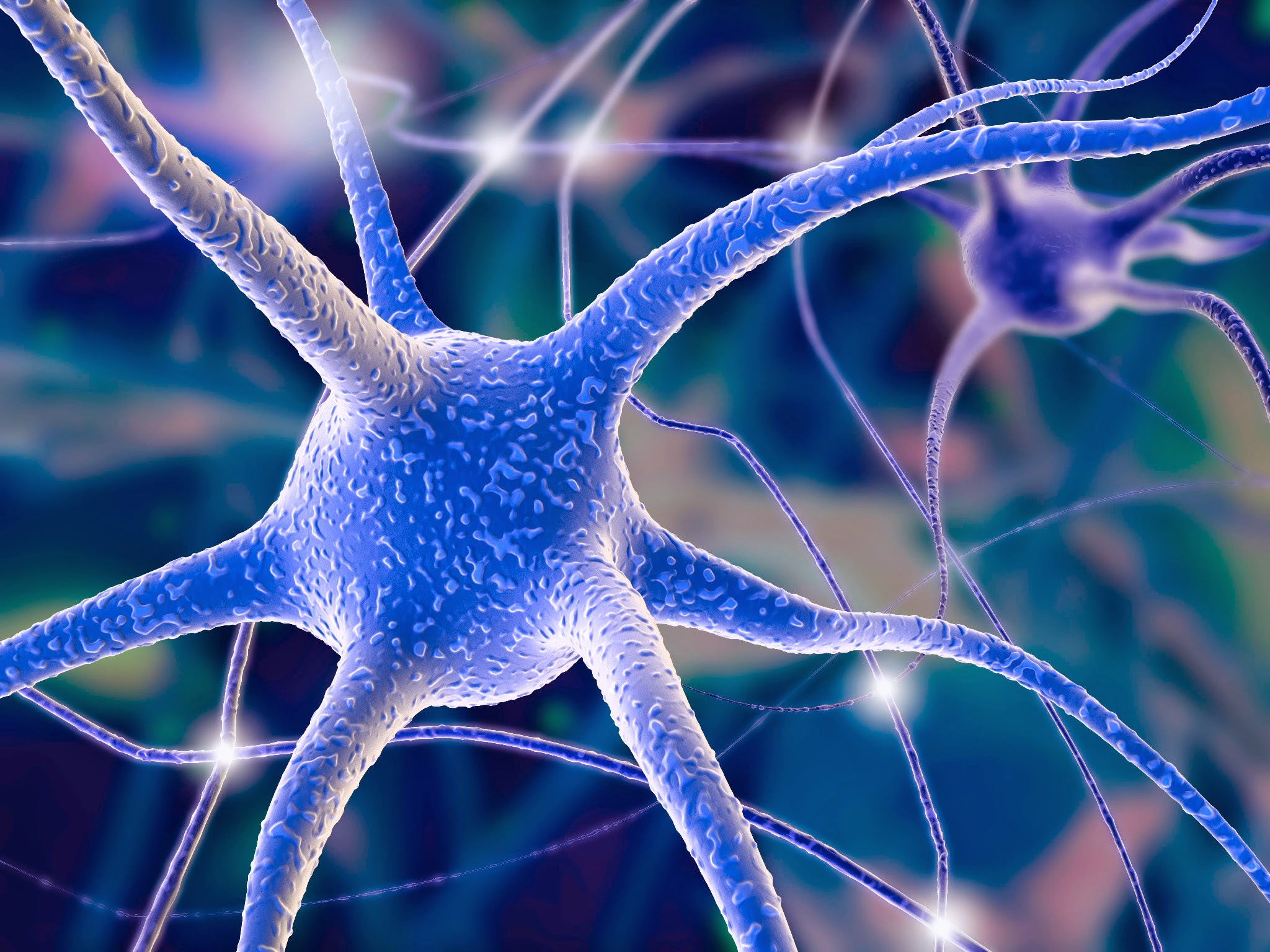 Neuron Wallpaper The national institutes of