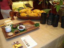Presentacion cacao Godiva en la Hacienda Buena Vista.