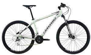 Cannondale CATALYST 2, 27,5