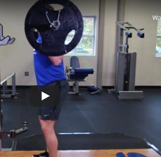 Full-Body Strength Workout squat