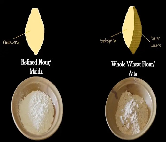 What is Refined Flour (Maida)? & Why it is Bad for Your Health?
