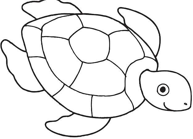 Sea Turtle Coloring Page Tweeting Cities Free Coloring Pages