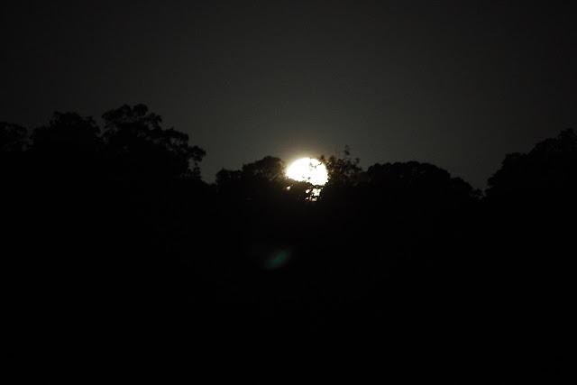 Lever de la lune au-dessus des Carbets de Coralie (Crique Yaoni), 29 octobre 2012. Photo : J.-M. Gayman