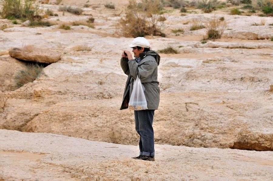 В Эйн Йоркам. Экскурсия гида Светланы Фиалковой в пустыню Негев.