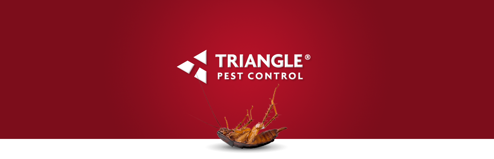 triangle-pest-control-header_0.png