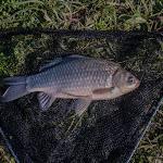 20160612_Fishing_Pryvitiv_058.jpg