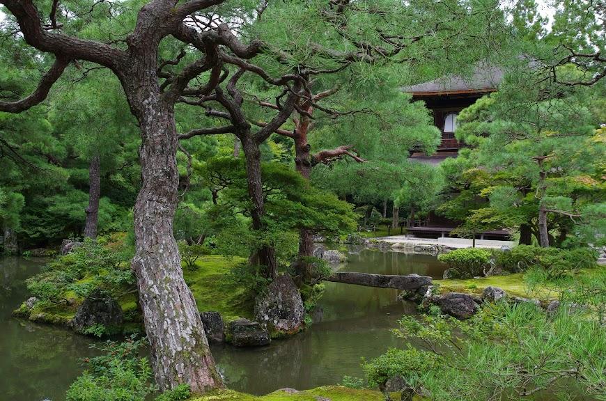 kyoto_2016_0059.JPG