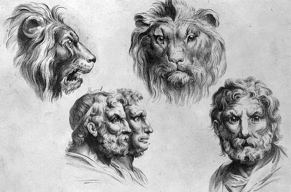 charles-le-brun-physiognomic-heads-3