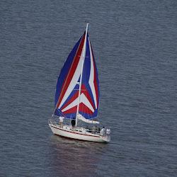 Dauphin Island Race 2013 029