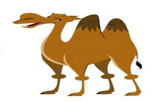 El camello que estierco en el rio