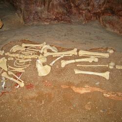 Petralona cave's profile photo