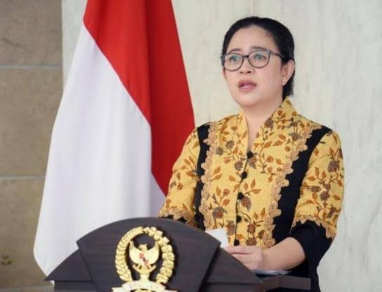 Puan Maharani Dukung Pemerataan Akses Kesehatan Mental untuk Masyarakat Indonesia