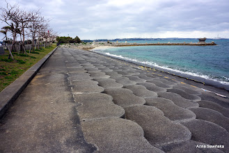 Photo: Kaichu-doro Drive