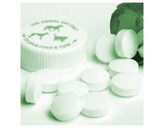 Aprovada Lei dos medicamentos genéricos veterinários