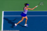 Ana Ivanovic - Dubai Duty Free Tennis Championships 2015 -DSC_8304.jpg