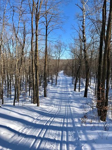 Eagle View, return on Twin and Island Lake trails