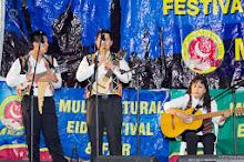 MEFF 2012-50