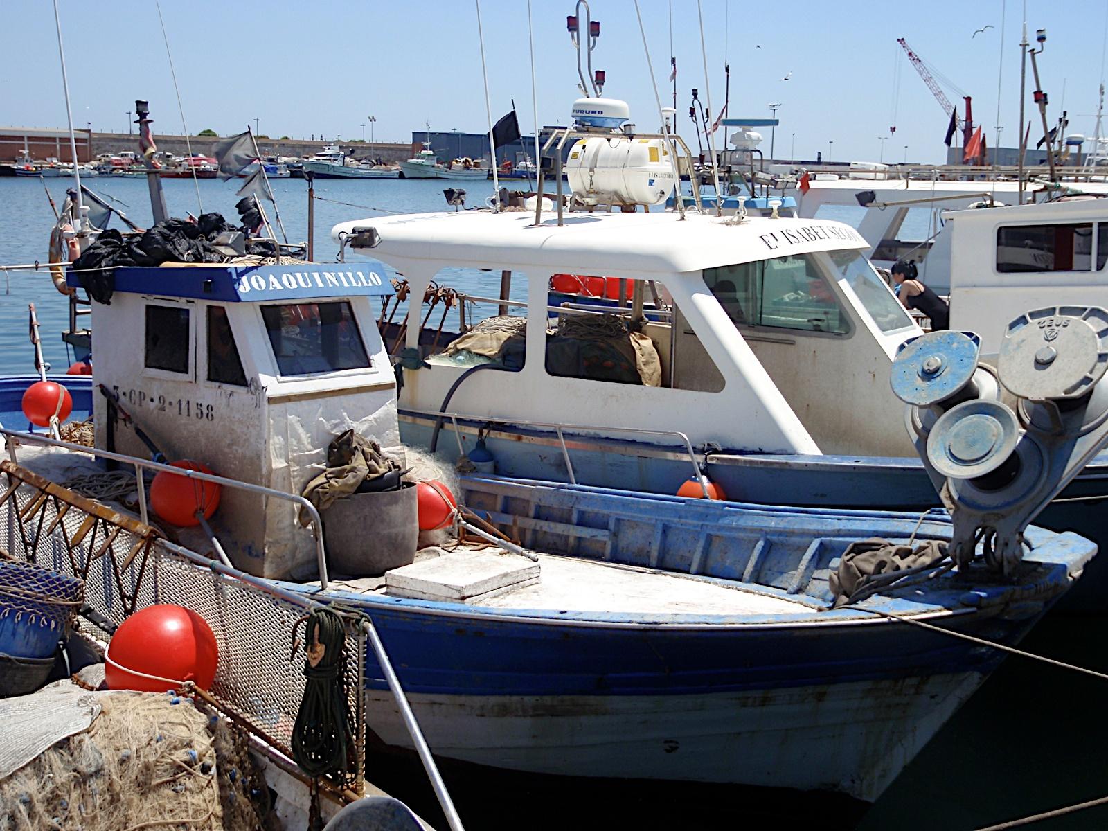 Monogràfic Marí 2010 - P5290232.JPG
