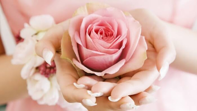 Florist Big Grove: Preferred Flowers Sold Nowadays