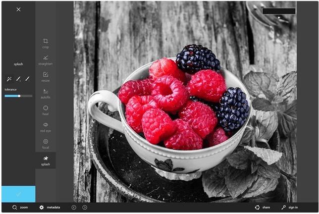 Autodesk Pixlr windows 8