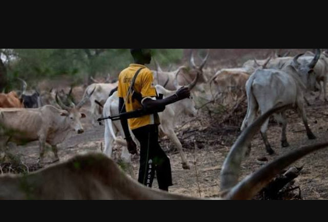 The menace of the Fulani's herdsmen and its adverse effect on the economy in Nigeria