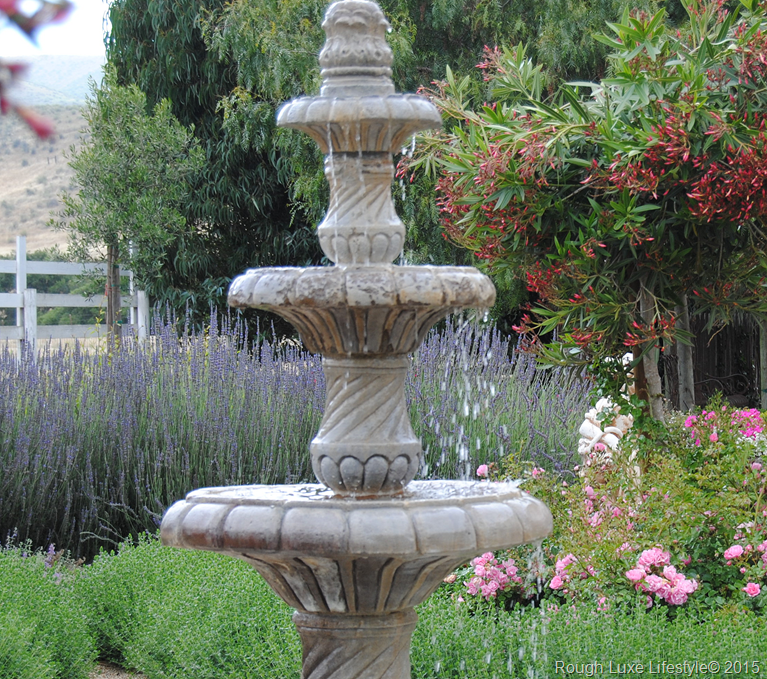Drought Tolerant Front Yard: Rough Luxe: Practical Drought Tolerant Plants