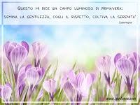 primavera immagine frasi Questo mi dice un campo luminoso di primavera semina la gentilezza cogli il rispetto coltiva la serenita.jpg