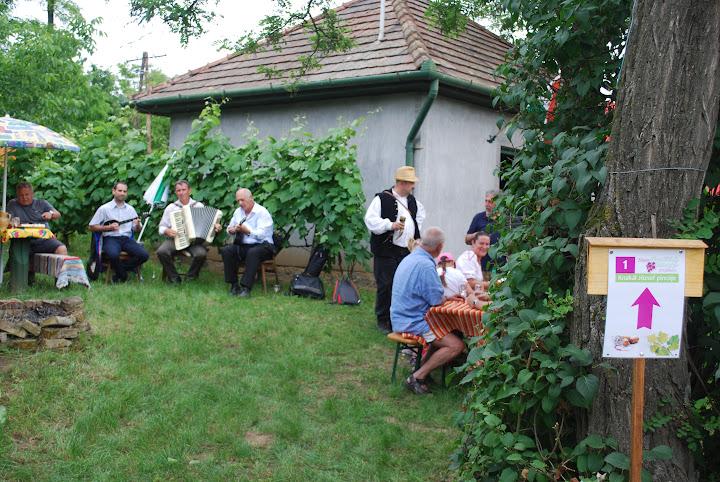 Pünkösdi bortúra - 2016.05.16. - Borvirág Zenekar