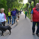On Tour in Weiden: 2015-06-15 - DSC_0466.JPG