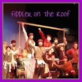 Thumbnail - SYE_Fiddler2011_2.JPG