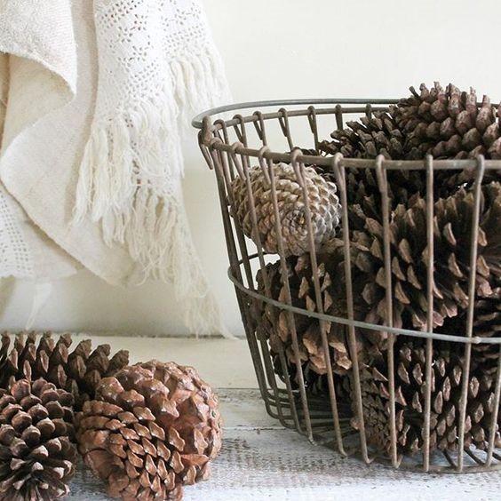[pinecones+in+basket%5B4%5D]