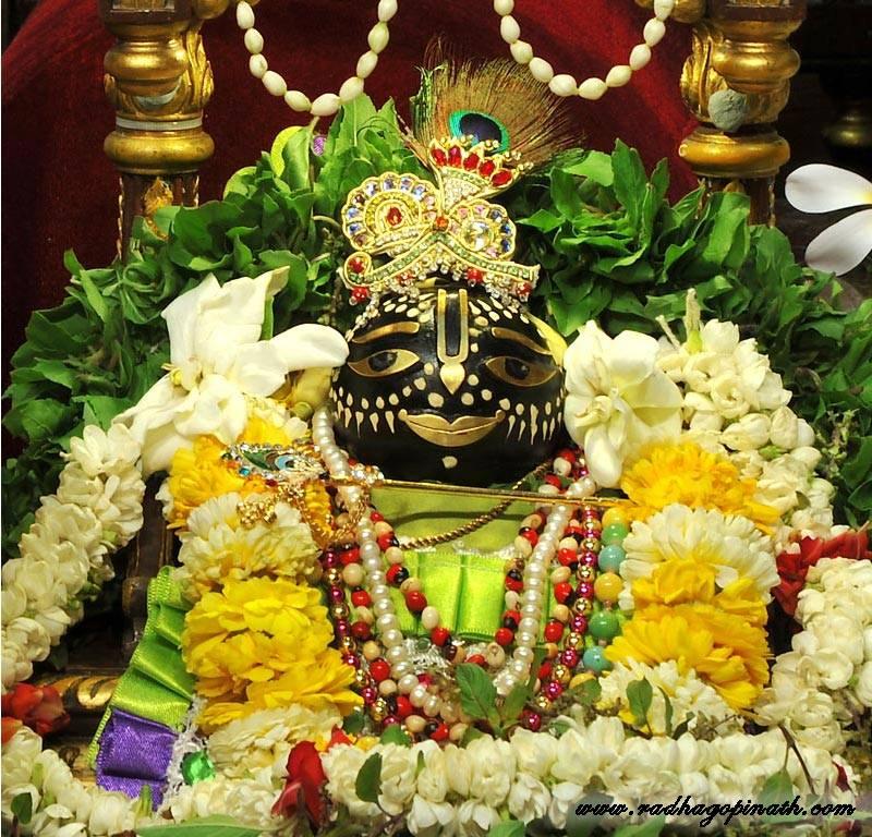 ISKCON Chowpatty Deity Darshan 15 Mar 2016 (3)