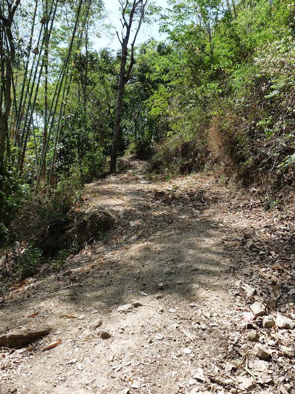 Chine: randonnée xishangbanna, région de Bada - Picture%2B811.jpg
