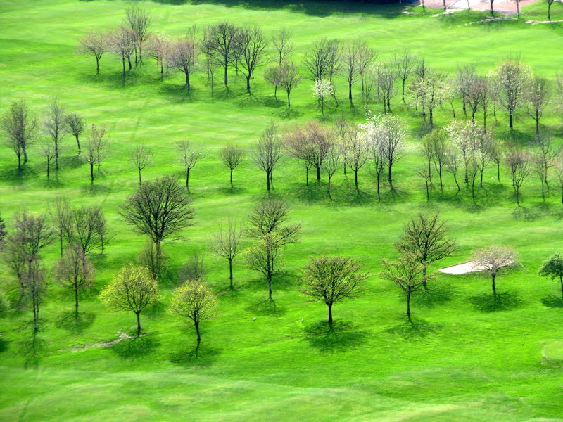 IMG_2517 - golf fields