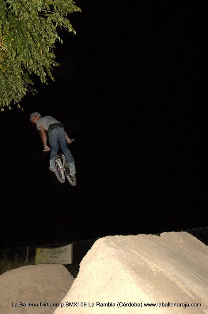 Ballena Dirt Jump BMX 2009 - BMX_09_0181.jpg