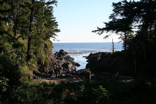 2012 - IMG_5448_Browns_Beach.JPG