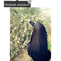 who is zainab_ alaisawi contact information