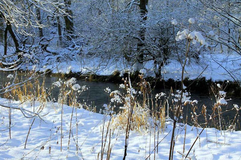 Winter-2013-j