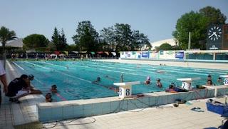 Camp d'entraînement des jeunes talents: 150 nageurs et nageuses en regroupement