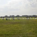 20140809-DSC_0067.jpg