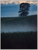 """Twilight at Bagley Marsh"" by Valerie Henshall - 1st ""A"" General"