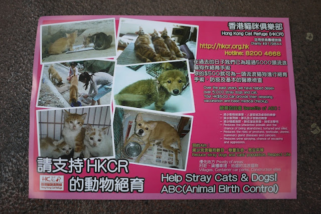 front of a Hong Kong Cat Refuge flyer for Animal Birth Control
