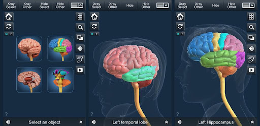 my brain anatomy apps on google playmy brain anatomy visual 3d sciencemedical