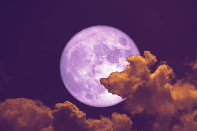 वर्म मून 2021 (Worm Moon)   Worm Moon About In Hindi