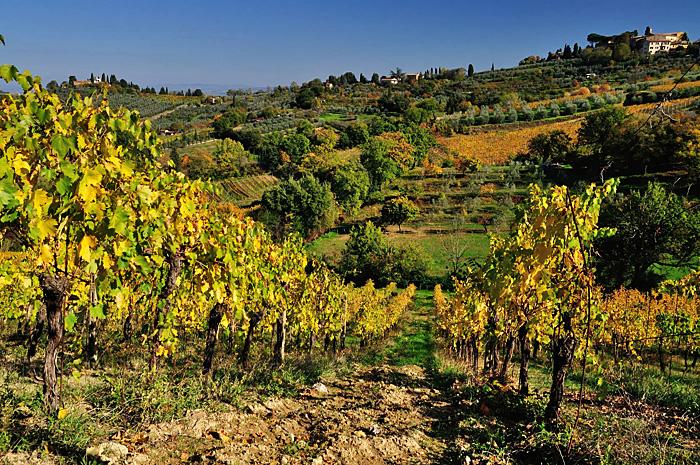 Toscana11.JPG