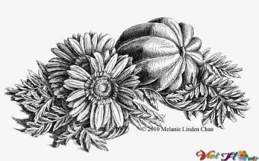 vẽ lọ hoa đồng tiền và trái cây