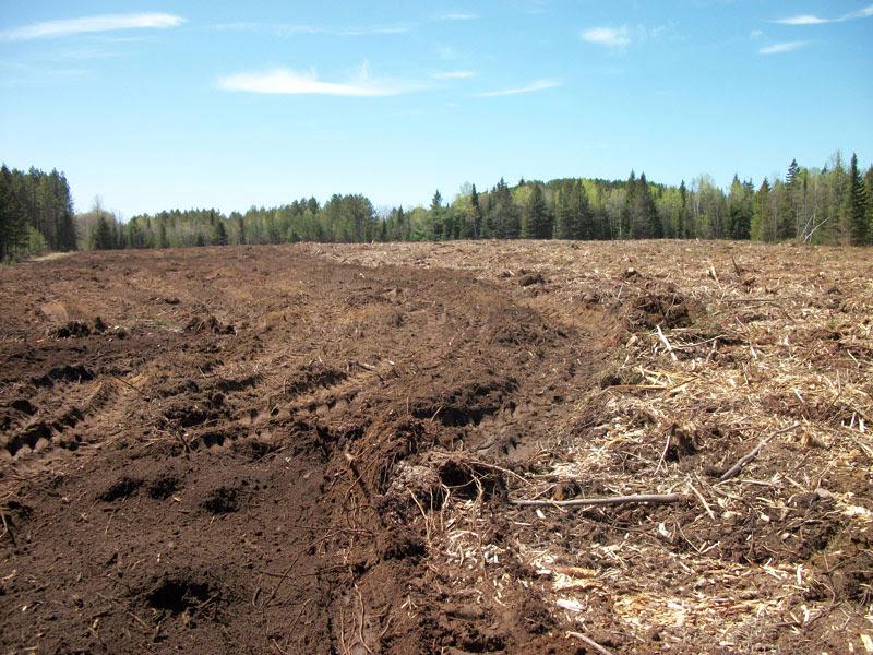 Broyage de surface agricole - broyage_de_surface_agricole_2_20130124_1114514396.jpg